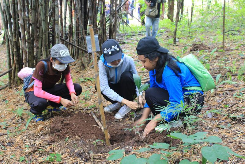 มทร.ล้านนา  ลำปาง ร่วมกับสวนรุกขชาติพระบาท จัดโครงการฟื้นฟูป่าดอยพระบาท ฉลองสิริราชสมบัติครบ 70 ปี