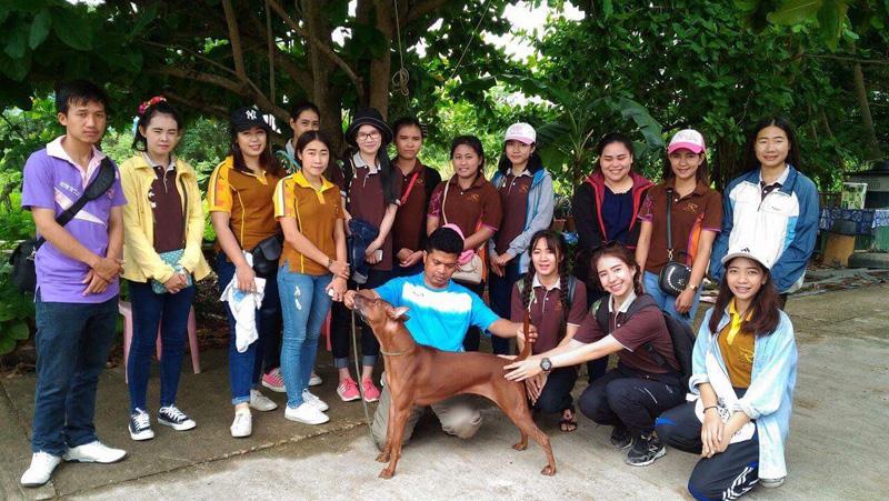 สาขาสัตวศาสตร์ มทร.ล้านนา ลำปาง เยี่ยมชมงานฟาร์มสุนัข ศึกษากระบวนการผลิตสัตว์เลี้ยงสวยงามในสถานประกอบการจริง