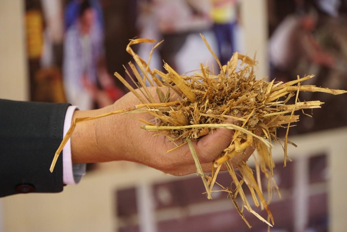 สัมมนาบูรณาการเชื่อมโยงเกษตรกรและหน่วยงานภาคีเครือข่ายสร้างชุมชนเกษตรปลอดการเผา