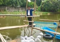 รูปภาพ : มอบพันธุ์ปลาโรงเรียนท่าทอง