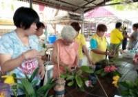 รูปภาพ : อบรมการขยายพันธุ์กล้วยไม้