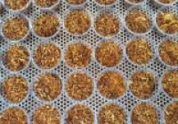รูปภาพ : การทำน้ำพริกปลาส้ม