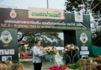 รูปภาพ : พิธีเปิดงานเกษตรน่านแฟร์ ครั้งที่ 3 มหกรรมยางพาราท้องถิ่นของดีเขตภาคเหนือ ประจำปี 2563