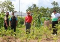 รูปภาพ : กอ.รมน. จังหวัดเชียงราย เยี่ยมชมแปลงเกษตรนักศึกษาทุนนวัตกรรมสายอาชีพชั้นสูง