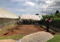 รูปภาพ : สร้างโรงเรือนสำหรับปลูกพืชศูนย์จักรฯ