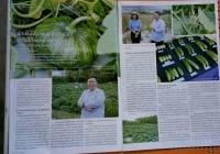 รูปภาพ : ผลงานการปรับปรุงพันธุ์พืช โดย ผู้ช่วยศาสตราจารย์ ดร.จานุลักษณ์ ขนบดี ได้รับการตีพิมพ์ลงในนิตยสารเกษตรกรก้าวหน้า ปีที่ 9 ฉบับที่ 120 กันยายน 2563