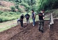 รูปภาพ : ห้อม ชนเผ่าลาหู่ซี สู่อาชีพที่ยั่งยืน