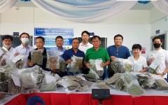 มทร.ล้านนา ประสบผลสำเร็จ เก็บเกี่ยวผลผลิตกัญชาคุณภาพสูงชุดแรก ส่งมอบกรมการแพทย์แผนไทยฯ ใช้ปรุงยาตำรับไทยและต่อยอดงานวิจัยทางการแพทย์