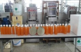 รูปภาพ : อาจารย์ มร.ล้านนา ลำปาง เป็นวิทยากรฝึกอบรมเชิงปฏิบัติการ การทำน้ำแตงเมล่อน