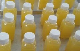 รูปภาพ : อาจารย์ มทร.ล้าน ลำปาง เป็นวิทยากรฝึกอบรมเชิงปฏิบัติการ การทำน้ำสับปะรดแท้