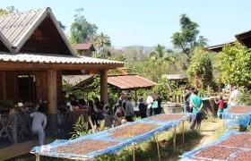 รูปภาพ : นักวิจัย มทร.ล้านนา ลำปาง ลงพื้นที่ศึกษารูปแบบ Business Ecosystem ของกาแฟบ้านป่าเหมี้ยง พัฒนาห่วงโซ่คุณค่ากาแฟของเกษตรกรรายย่อยในภาคเหนือตอนบน
