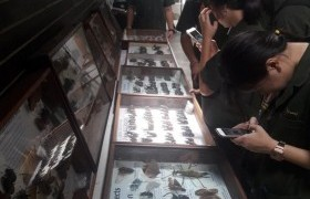 รูปภาพ : หลักสูตรเตรียมสถาปัตยกรรมศาสตร์ นำนักศึกษาเรียนรู้นอกห้องเรียน ณ พิพิธภัณฑ์สวนสัตว์แมลงสยาม อ.แม่ริม จ.เชียงใหม่