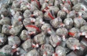 รูปภาพ : อาจารย์ มทร.ล้านนา ลำปาง  อบรมการเพิ่มมูลค่าผลผลิตจากเห็ด ด้วยการการทำแหนมเห็ด