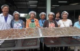 รูปภาพ : อาจารย์ มทร.ล้านนา ลำปาง เป็นวิทยากรฝึกอบรมเชิงปฏิบัติการ การทำข้าวเกรียบเห็ด และข้าวเกรียบฟักทอง