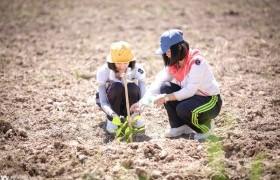 รูปภาพ : สโมสรนักศึกษา มทร.ล้านนา ลำปาง จัดกิจกรรมปลูกต้นไม้ สร้างป่า สร้างสัมพันธ์น้องพี่ 2562