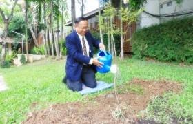 รูปภาพ : ประธานคณะบุคคลฯ ปลูกต้นรวงผึ้งเพื่อเพิ่มพื้นที่สีเขียวและแสดงออกถึงความจงรักภักดี