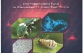 รูปภาพ : เชื้อรากำจัดแมลง: ทางเลือกใหม่ของการควบคุมแมลงศัตรูพืช