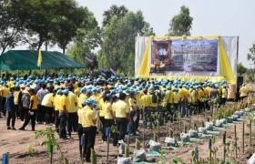 รูปภาพ : มทร.ล้านนา พิษณุโลก ร่วมโครงการปลูกป่า  เนื่องในโอกาสวันเฉลิมพระชนมพรรษาพระบาทสมเด็จพระเจ้าอยู่หัว  28 กรกฎาคม 2563